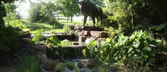 Fernland Park ~ Wordless Wednesday