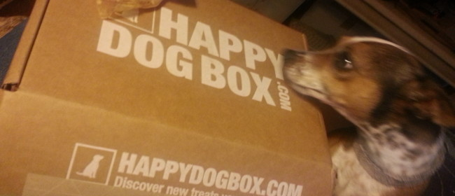 HappyDogBox – Christmas Gift Idea for Your Dog!