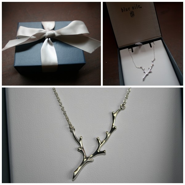 Blue Nile Branch Necklace in Sterling Silver