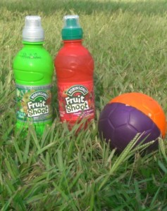 Have A Ball Stunt Hunt with Fruit Shoot!