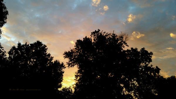 August September Sunrise