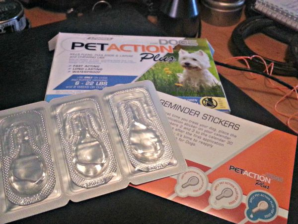 PetAction™Plus from True Science, helps our MaggieMae stay flea free!