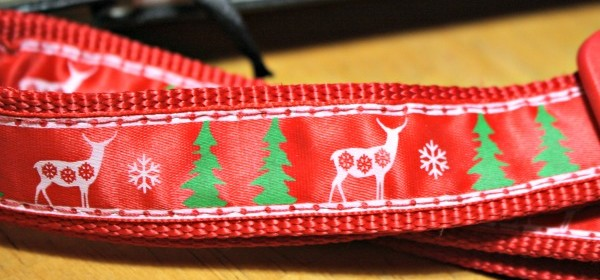A Festive Christmas Collar for Your Pet