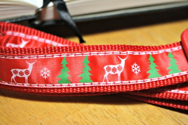 The Christmas Collar we chose has Christmas trees and deer with snowflakes.