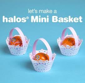 Halos® Mini Basket
