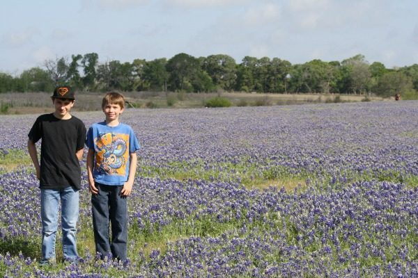 My boys in a field of Texas bluebonnets. This is what Purex Fresh Bluebonnet smells like!