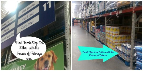Fresh Step Cat Litter with the Power of Febreze is only available at Sam's Club