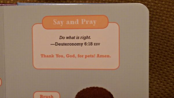 Say & Pray Devotions has easy to remember memory verses.