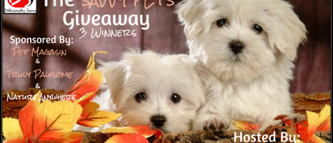 Blogger Opp: The Savvy Pets Giveaway Promotion