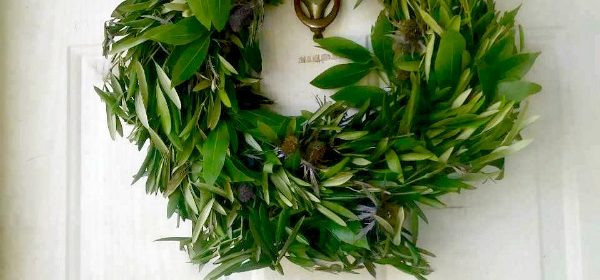 Blue Thistle and Olive Leaf Wreath from Club Botanic