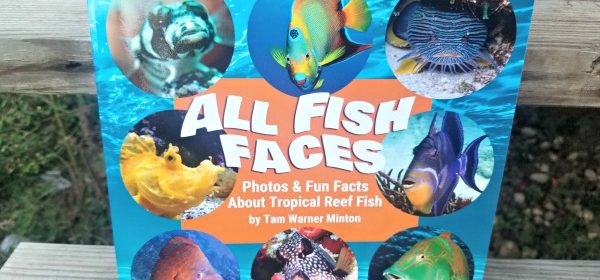 Fish Faces Show Character!